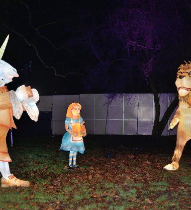 Alice in the Winterland